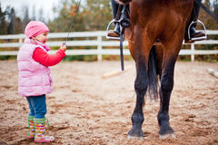 Child with horse Stock Photos