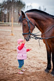 Child with horse stock image