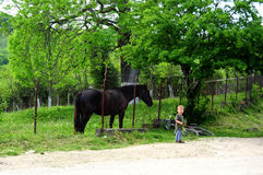 Child and horse Stock Photography