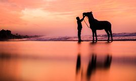 A child with a horse at sunset stock photos