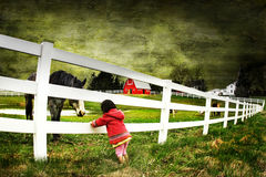 Child and a horse with texture. Child and horse staring at at eachother's eyes Royalty Free Stock Photos