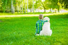 Child hugging golden retriever, sitting with his back to the camera.  royalty free stock photo