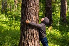 Child hugging pine (tree) Royalty Free Stock Photos