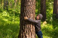 Child hugging pine (tree) Stock Photo