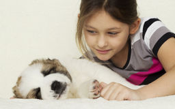 Child hugging a puppy Stock Photography