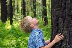 Child hugging tree Royalty Free Stock Image
