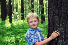 Child hugging tree Royalty Free Stock Photo