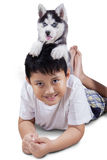 Child and husky dog on his head Stock Image