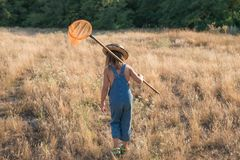 Child with a insect net catches butterfly.  royalty free stock photo