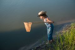 Child with a insect net catches frog royalty free stock images