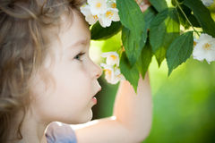 Child with jasmin flower Stock Photos