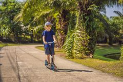 Child on kick scooter in park. Kids learn to skate roller board. Little boy skating on sunny summer day. Outdoor royalty free stock photo