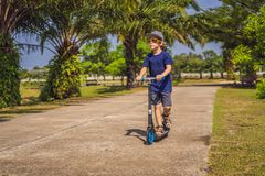 Child on kick scooter in park. Kids learn to skate roller board. Little boy skating on sunny summer day. Outdoor. Activity for children on safe residential stock photos