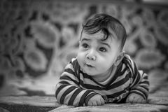 Child, Kid, Cute, Portrait, People Stock Photo