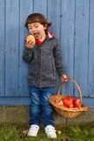 Child kid eating apple fruit full body outdoor autumn fall healt. Hy outdoors Stock Image