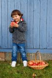 Child kid eating apple fruit full body outdoor copyspace autumn. Fall healthy outdoors Royalty Free Stock Photos