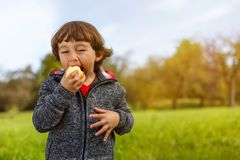 Child kid eating apple fruit outdoor autumn fall nature healthy Royalty Free Stock Images