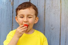 Child kid little boy eating strawberry fruit summer strawberries. Copyspace copy space outdoor outdoors outside spring royalty free stock image