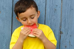 Child kid little boy eating watermelon summer copyspace copy spa royalty free stock photo