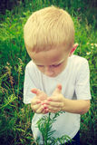 Child kid picking flowers in meadow. Environment. Child kid examining and picking flowers in meadow. Environmental awareness education. Green summer nature royalty free stock images