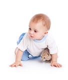 Child with kitten Royalty Free Stock Photo
