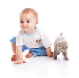 Child with kitten Royalty Free Stock Photography