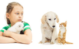 Child and kitten and puppy Stock Photo
