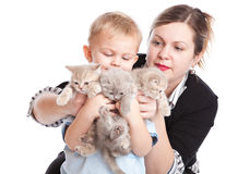 Child with kittens Royalty Free Stock Photos