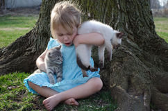 Child and kittens Royalty Free Stock Photos