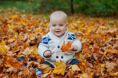 Child in knitted sweater sits among pumpkins in autumn park Stock Images
