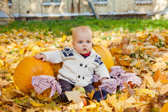 Child in knitted sweater sits among pumpkins in autumn park Stock Photo