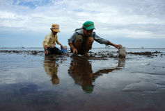 Child labor on Vietnam beach Stock Photos