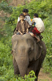 Child laborer with working elephant Stock Photo