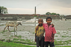Child labour at the Indian Brick field Royalty Free Stock Photography
