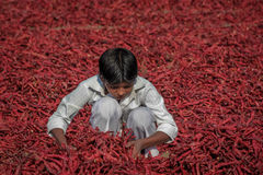 Child Labour Royalty Free Stock Photography