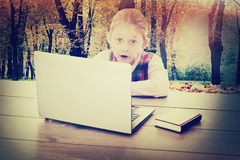 Child a laptop Stock Images