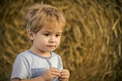 Child with large eyes. Boy play on farm or ranch field, vacation Stock Image