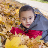 Child laying in autumn leaves royalty free stock photos