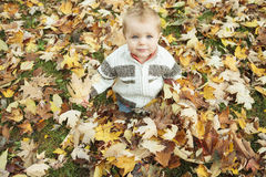 Child in leaf Stock Photos