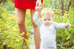 The child learns to walk on the grass. The child learns to walk in the park barefoot on the grass Royalty Free Stock Images