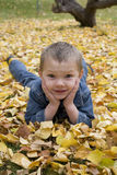 Child in leaves Royalty Free Stock Photo