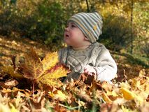 child in the leaves Royalty Free Stock Photo