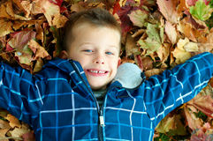 Child in the leaves Stock Images