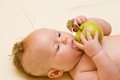 Child licks the apple. Lies on diaper stock image