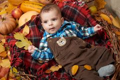 Child lie on red tartan plaid with yellow autumn leaves, apples, pumpkin and decoration, fall season Royalty Free Stock Photography