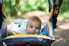The child lies in a stroller on his stomach Royalty Free Stock Photos