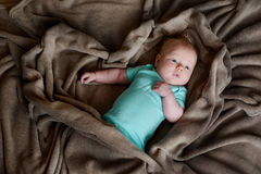 Child little boy is lying in bed under a brown blanket Stock Photography