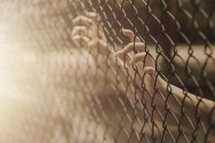 Child little girl hand holding steel cage. Child teen girl hand holding steel cage to child abduction or children imprisoned concept Royalty Free Stock Images