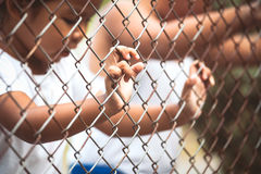 Child little girl hand holding steel mesh with her friendp Stock Image