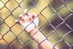 Child little girl hand holding steel mesh Royalty Free Stock Images
